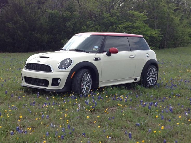 2013 Mini Coper JCW in the TX bluebonnets