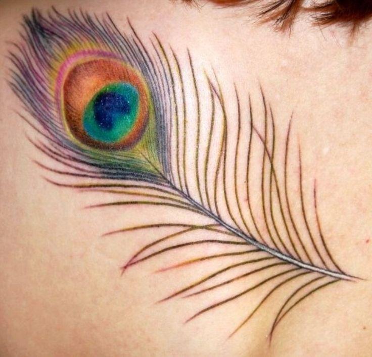 Peacock Feather With Eye Tattoo | www.pixshark.com ...