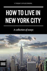 Living In New York City Essay - image 11
