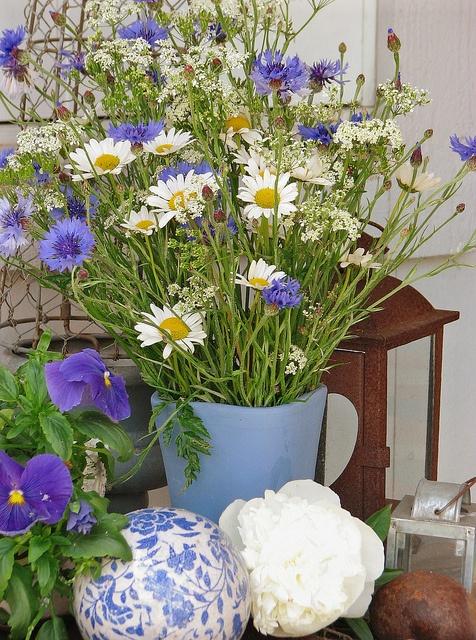 Midsummer flowers