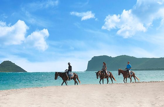 Horseback Riding from Coconut Bay Beach #beach #horsebackriding