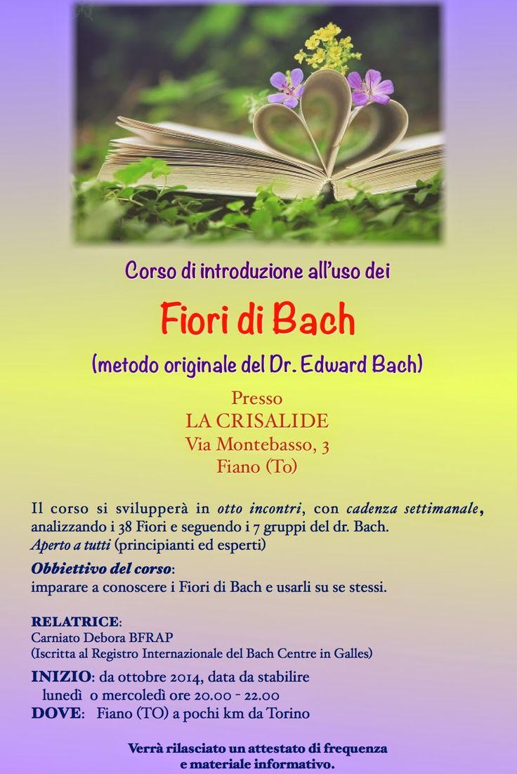 Almalotus ........ di Debora Carniato BFRAP   Consulente in Fiori di Bach per Animali: CORSO DI INTRODUZIONE ALL'USO DEI FIORI DI BACH