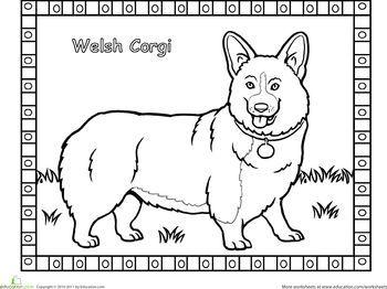 22 Best Corgi Coloring Pages Images On Pinterest