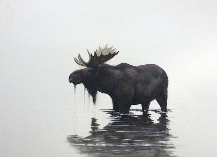 Moose Reflection 9x12 Watercolour by Morten Solberg