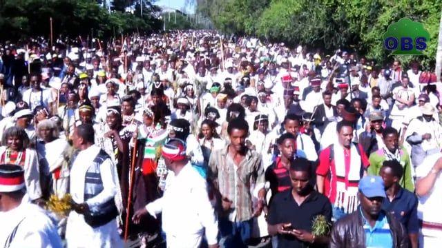Irreecha Malkaa Oromo 2015  at Hora Harsadii, Oromia. Thanksgiving