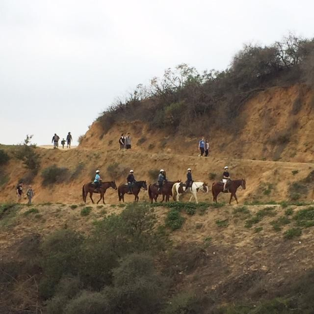 Horseback riding and hiking are abundant in Griffith Park, Los Angeles.