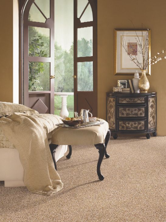 Receive Off Of Select Tigressa Carpet Styles For Your Home.
