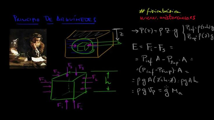 PRINCIPIO DE ARQUIMEDES: FÍSICA FLUIDOS 5