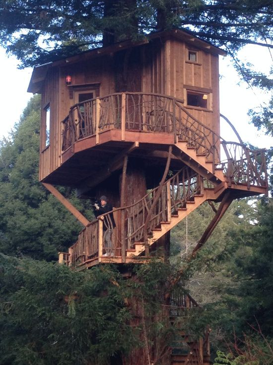 Animal Planet's 'Treehouse Masters' visit Trinidad Look At This Treehouse   Lost Coast Outpost   Humboldt County