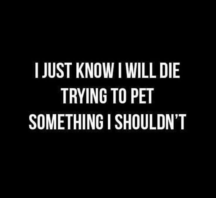 I know I will die...
