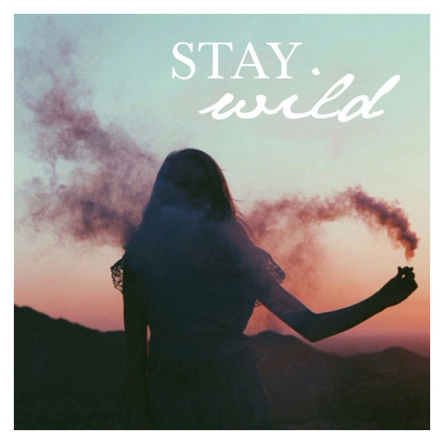 Stay Wild by becnellie on Polyvore featuring art