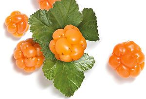 The Health Benefits Of Consuming Cloudberry