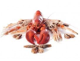 Crustacés - achat vente en ligne de fruits de mer : homards, langoustines, tourteaux livrés en 24h ! - Luximer