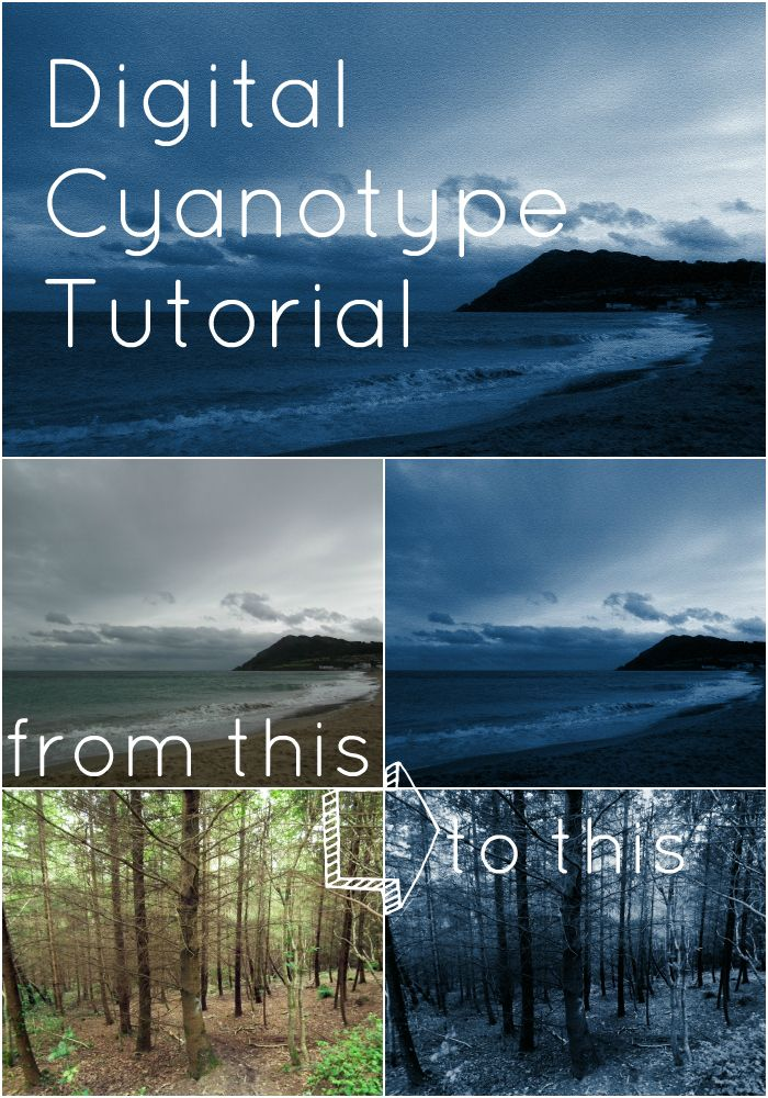 PicMonkey Collage6 Cyanotype Photo Tutorial