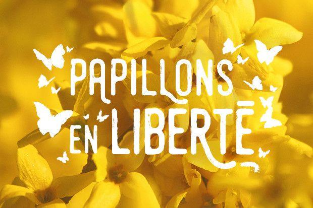 Papillons en Liberté - Effet nature. Au Jardin Botanique de Montréal du 23 février au 30 avril 2017. Dans la grande serre, des centaines de papillons en liberté qui virevoltent autour de vous.