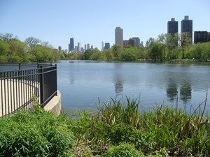 Get out Chicago! Try a few of these Chicago parks for a fun adventure.