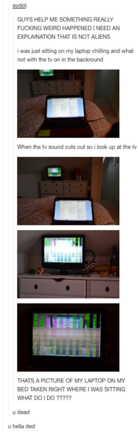 22 Times Tumblr Users Reported Back From the Real World | Pleated-Jeans.com http://ibeebz.com