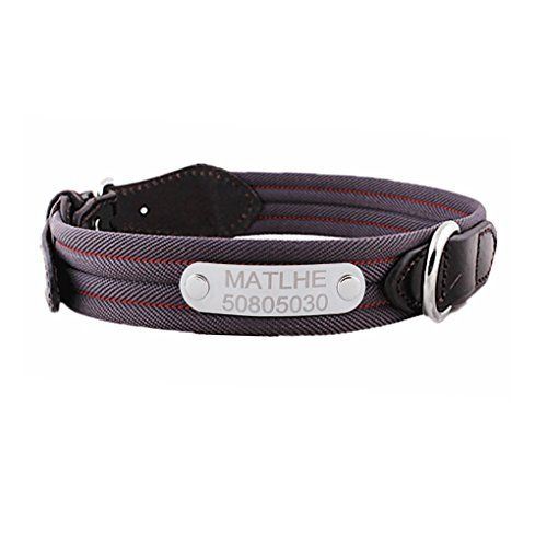 MoonLove Luxury Striped Nylon Pet Dog Safety Collar Personalized Custom Engraved Pet Dog Cat Puppy Name ID Phone Tag Leash Harness Adjustable Metal Buckle Leather Collar with Name Plate Tags for Small...