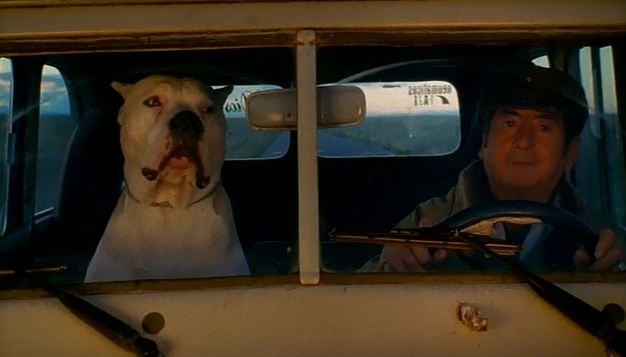 """A casa con le Chien""  Mis 134 capturas de la película ""El perro"" de Carlos Sorín (2004) disponibles en   https://docs.google.com/folder/d/0B7isdvN-PlCmNzBZUjF5bExkOGc/edit?pli=1  Idea para llevar al aula: http://www.flickr.com/photos/marcelaspezzapria/sets/72157631657906305/"