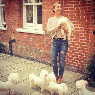 Instagram photo by annasaccone - When you have too many dogs  #worldanimalday