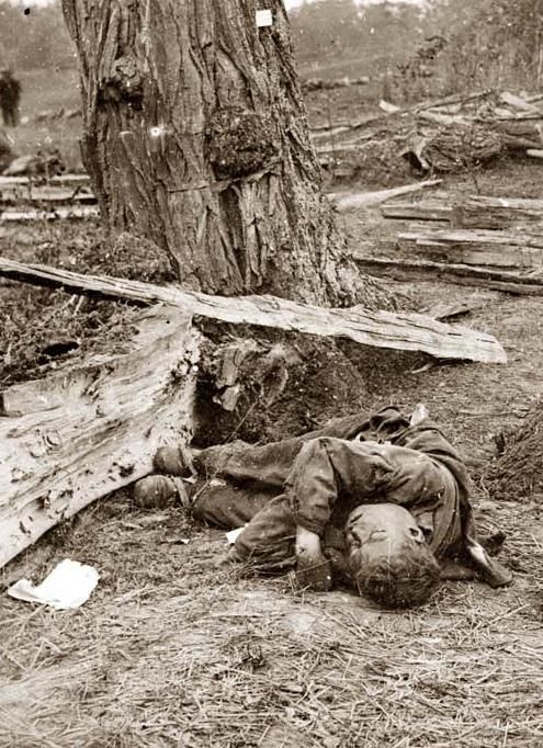 essay on the battle of antietam Free essay: let us probe deeper into our countries darkest days civil war: many notable officers served during the antietam battle that shaped the outcome.