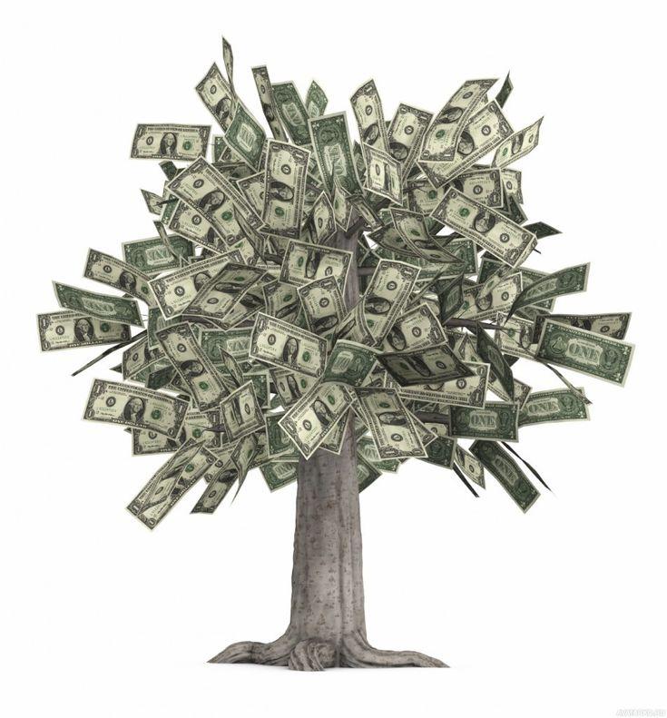 Денежное дерево картинки красивые