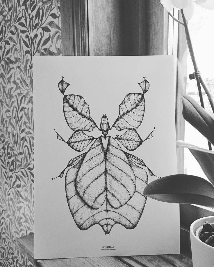 Phyllidae! Posters färdiga för försäljning inför #julmarknad på #nordanå #bugposter #insekt #vandrandeblad