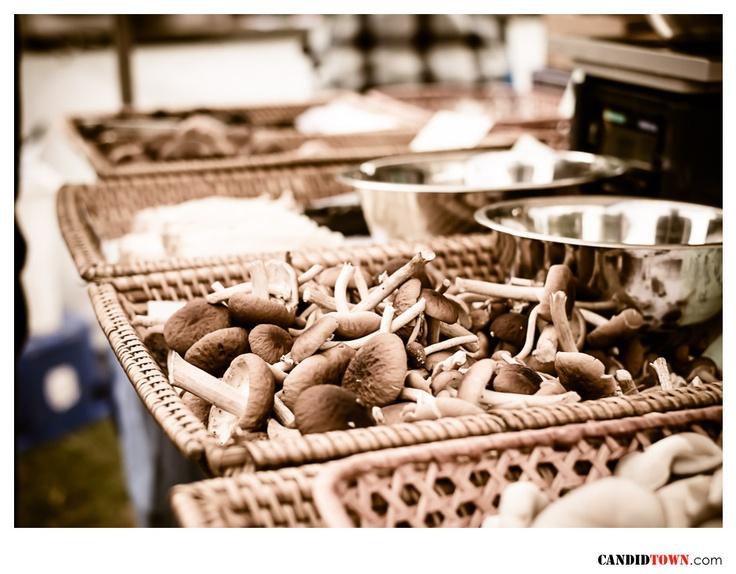 Sydney Growers Market Pyrmont -