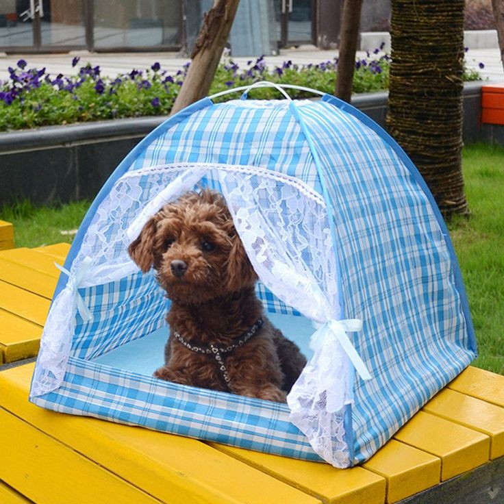 Summer Outdoor Travel Pet Camping Tent Dog Kennel House Kitten Cat Nest Foldable Beds Cute Lace Tent for Small Puppy Dogs // FREE Shipping //     Get it here ---> https://thepetscastle.com/summer-outdoor-travel-pet-camping-tent-dog-kennel-house-kitten-cat-nest-foldable-beds-cute-lace-tent-for-small-puppy-dogs/    #dog #dog #puppy #pet #pets #dogsitting #ilovemydog #lovedogs #lovepuppies #hound #adorable #doglover