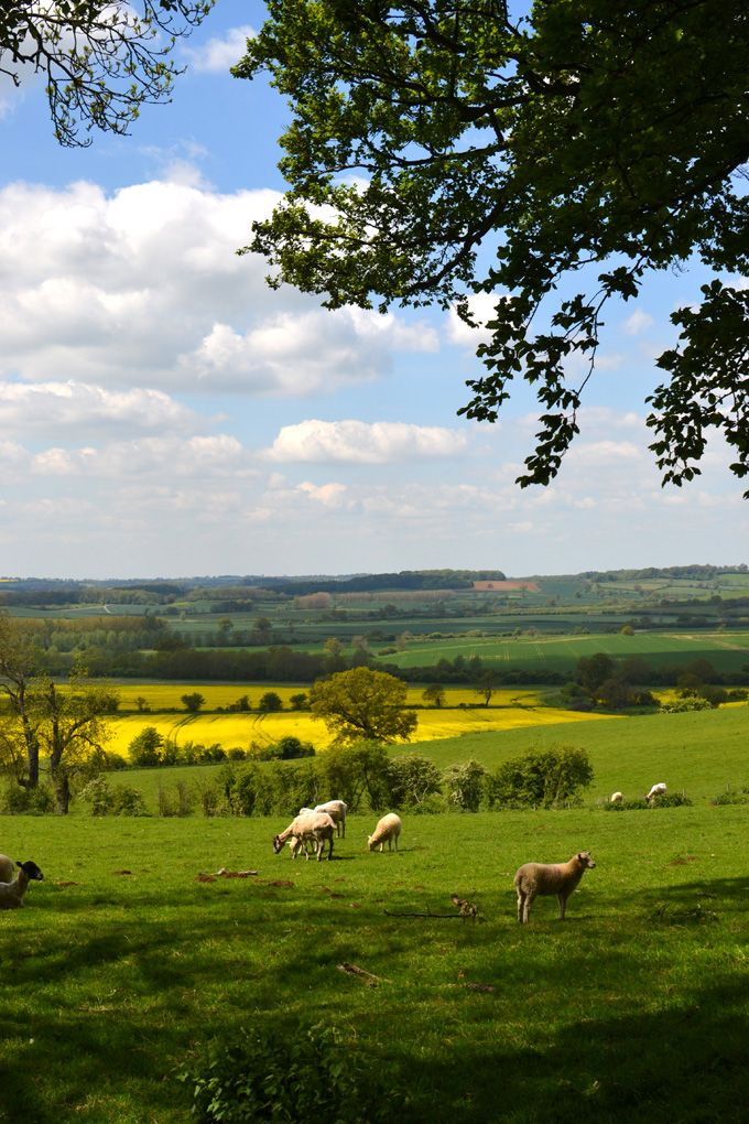 beautiful british countryside...