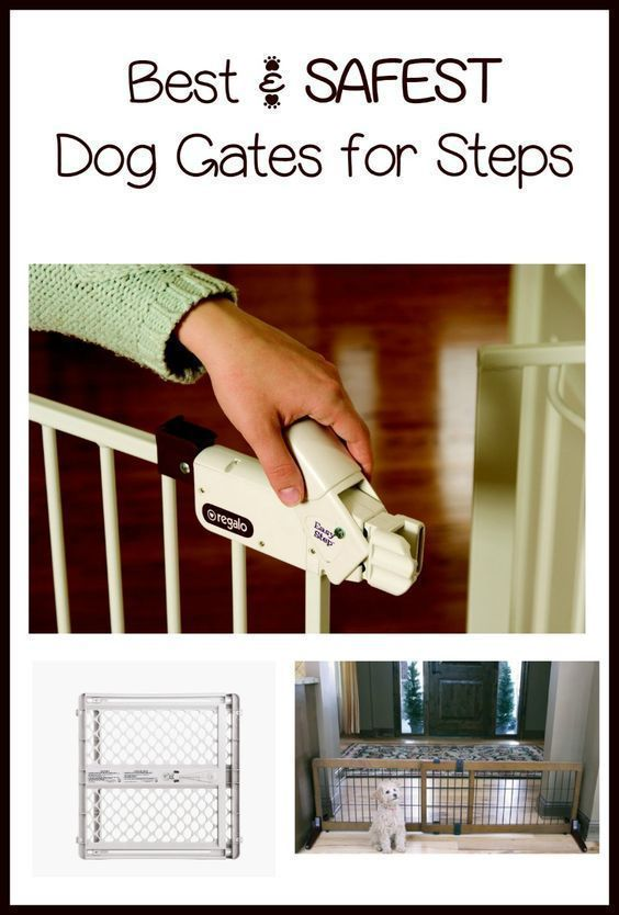When thinking about dog gates for stairs, it's important to keep safety in mind. One of the best dog gates for stairs is the open and close design gate.