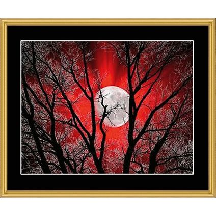 Red Moon II Counted Cross Stitch. #foxcollection #craft #crossstitch #redmoon #moon View here - http://foxcollection.innovations.com.au/p/needlework/cross-stitch-charts/red-moon-ii?Affiliate=FBFC3