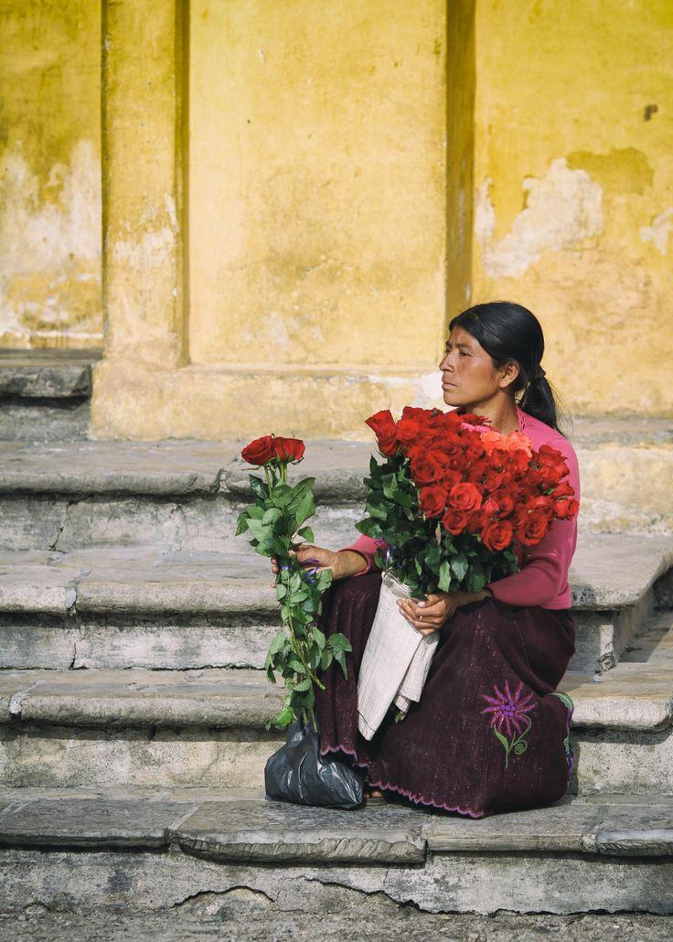 Rosas (redux) - San Cristobal de las Casas