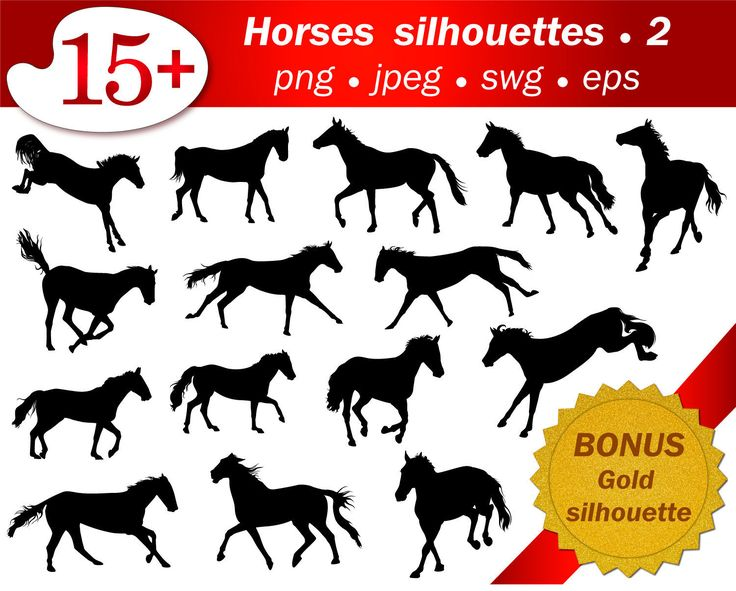 15 horses silhouette. Part 2. Eps, svg, jpeg, png. Bonus gold glitter silhouette. Instant download, editable, scrapbooking, clip art, by GecleeArtStudio on Etsy