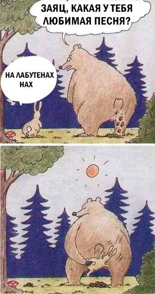 Шредингер Шутит