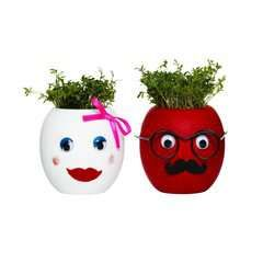 Panduro Hobby - Juniorsæt The Cress heads
