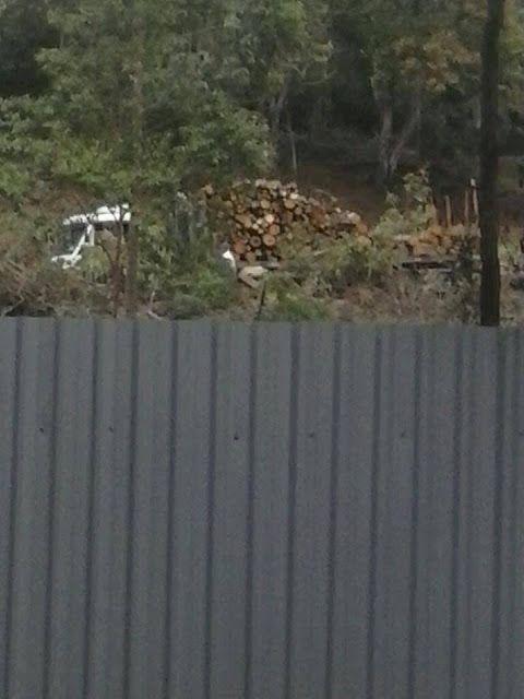 TRÂNSITO E NOTÍCIAS NOVA FRIBURGO: Uma grande área devastada no Parque São Clemente, ...