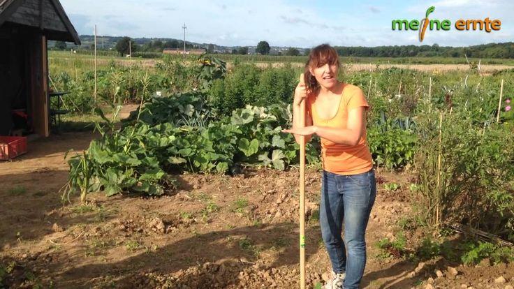 In unserem Video erklären wir die Nutzung der gängigsten Gartengeräte, damit Ihr ohne Mühe und mit viel Spaß erfolgreich Unkraut jäten, Boden lockern oder Gemüse ernten könnt!