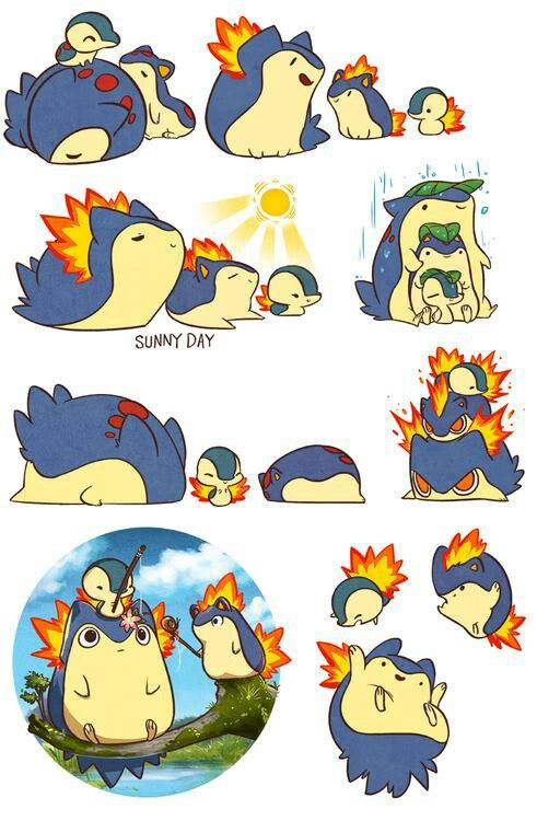 Typhlosion, Quilava, Cyndaquil