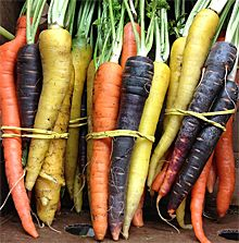 Certified organic heirloom carrots - locally grown and delivered by FDO in Toronto and Mississauga.
