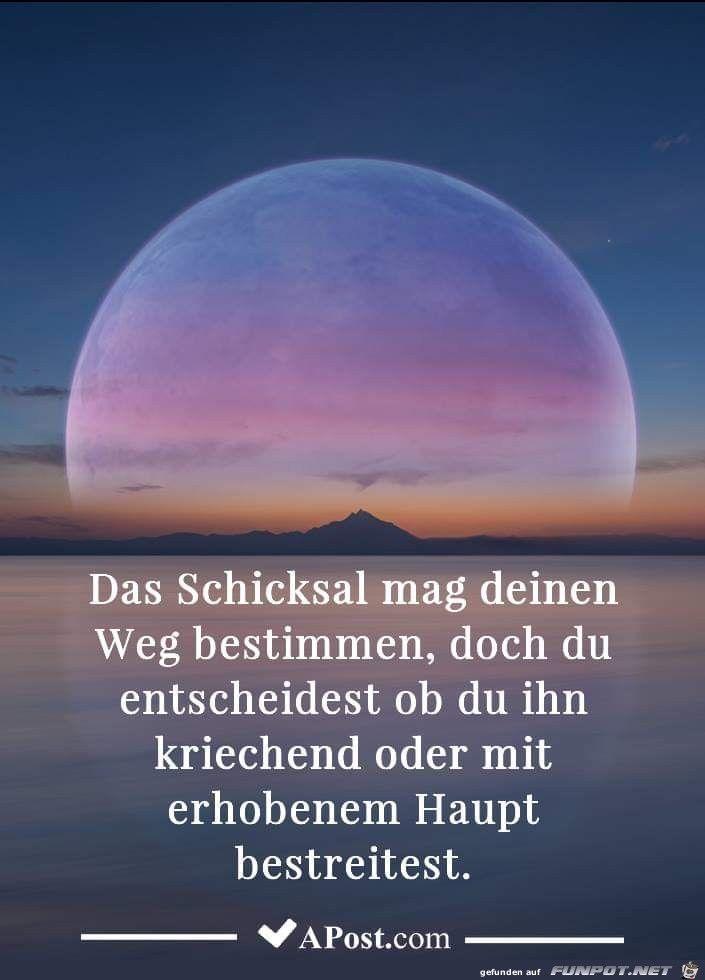 Ein Bild Fur S Herz Das Schicksal Jpg Eine Von 1 800 Dateien In Der Kategorie Lebensweisheiten Auf Funpot German Quotes Life Quotes French Quotes