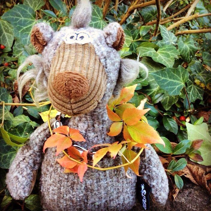 Fall is here...Happy Weekend! http://goo.gl/3N4MY7 (sigikid Photo Of The Week)