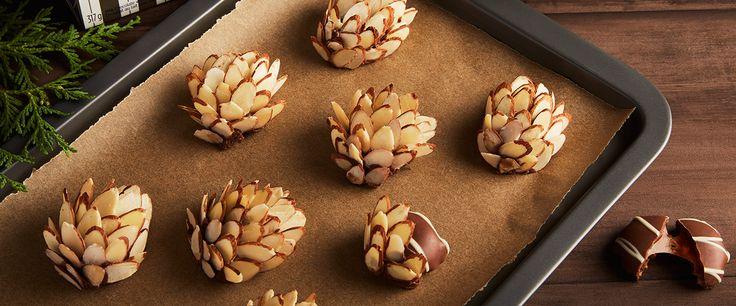 TURTLES Pine Cones
