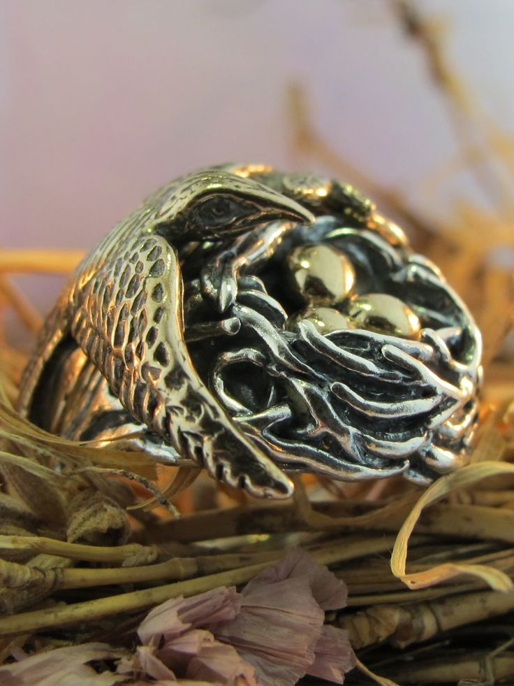 Marty Magic Store - Bird and Bird Nest Ring - Silver and Bronze Version, $295.00 (https://www.martymagic.com/bird-and-bird-nest-ring-silver-and-bronze-version/)