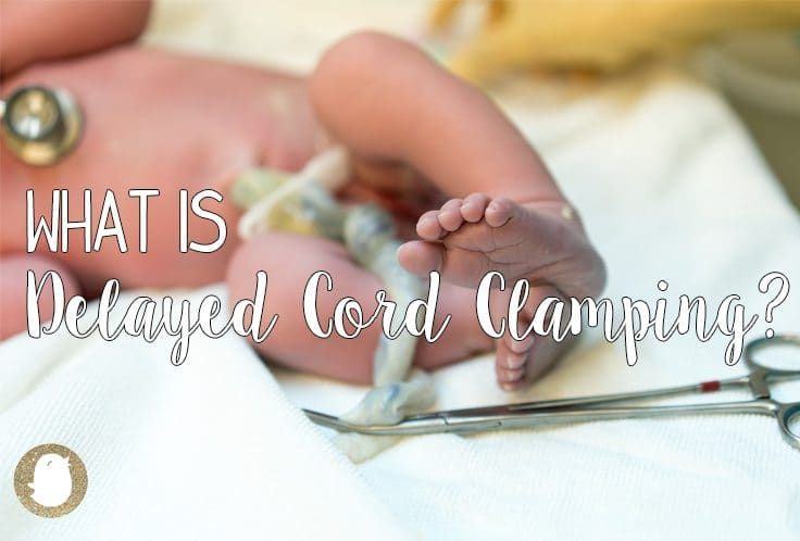 While preparing your birth plan for your baby's big day, you may have stumbled upon the option of delaying the umbilical cord clamping after the birth of your baby. But what does that mean? What is delayed cord clamping? And what are the benefits and risks of doing it? Here are the different answers to those questions to help you choose if delayed cord clamping is something for you and your baby. What is Delayed Cord Clamping? It depends on who you ask… World Health Organization (WHO)…