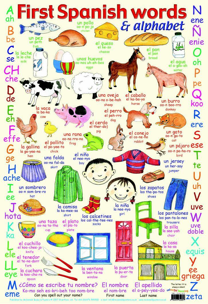 Learn to speak spanish!                                                                                                                                                                                 More