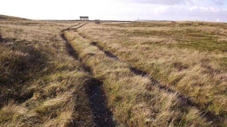 """Two-track concrete road from 2WW (""""Tyskervej"""")."""