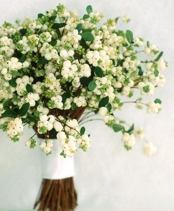 White option: we would put a mass of snowberries in zinc vases to create a tree effect.