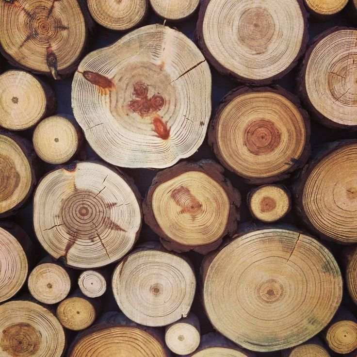 Takie drewniane panele na ścianę to idealna propozycja dla największych fanów naturalnego piękna! 👌    #HOFF #salonhoff #kraków #ilovehoff #łazienka #łazienki #design #wystrojwnetrz #kuchnia #kuchnie #kitchen #salon #livingroom #wood #wooden #drewno #naturalnie #natural #perfect #beautiful #cool #trends #trend #trendy #modnie #nice