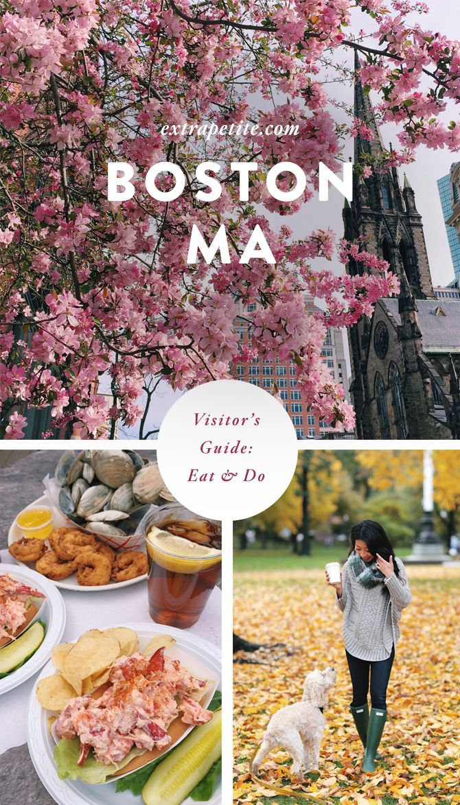 Boston, MA Visitor's Guide: What to do + Where to Eat #travel